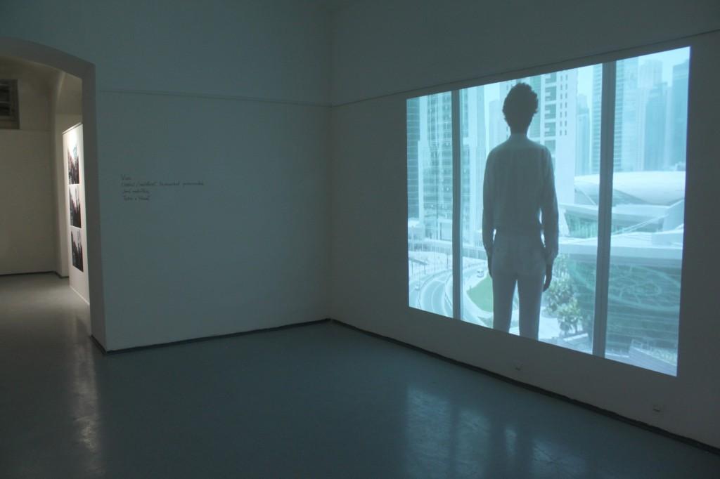 Pozorovatel / Observer / instalace / 2010